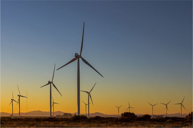 Wind farm in S. Africa