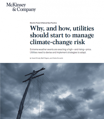 Extreme weather events are exacting a high—and rising—price. Utilities need to devise and implement strategies to adapt.