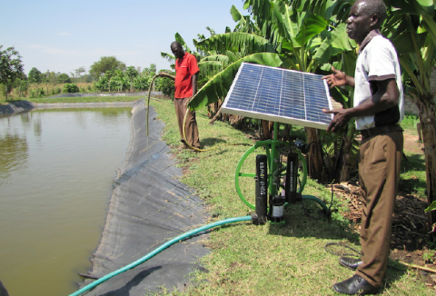 Solar-powered irrigation in Africa