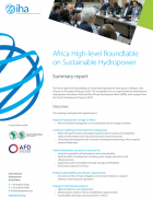 Africa High-level Roundtable